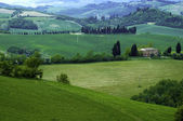 Fields in Italy — Stock Photo