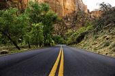 Carretera asfaltada, parque nacional zion — Foto de Stock