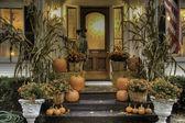 Ready for Halloween — Stock Photo