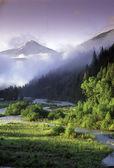 Rocky Mountain spring — Stock Photo