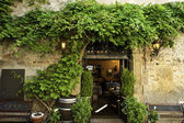 Wisteria and garden patio, Verona, Italy — Stock Photo