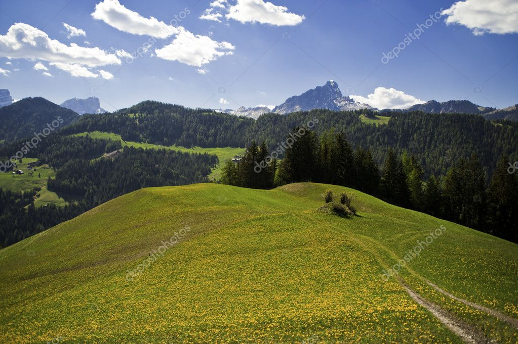 Spring pastures in Dolomite Mountains of Alta Adige region in Italy — Stock Photo #10338709