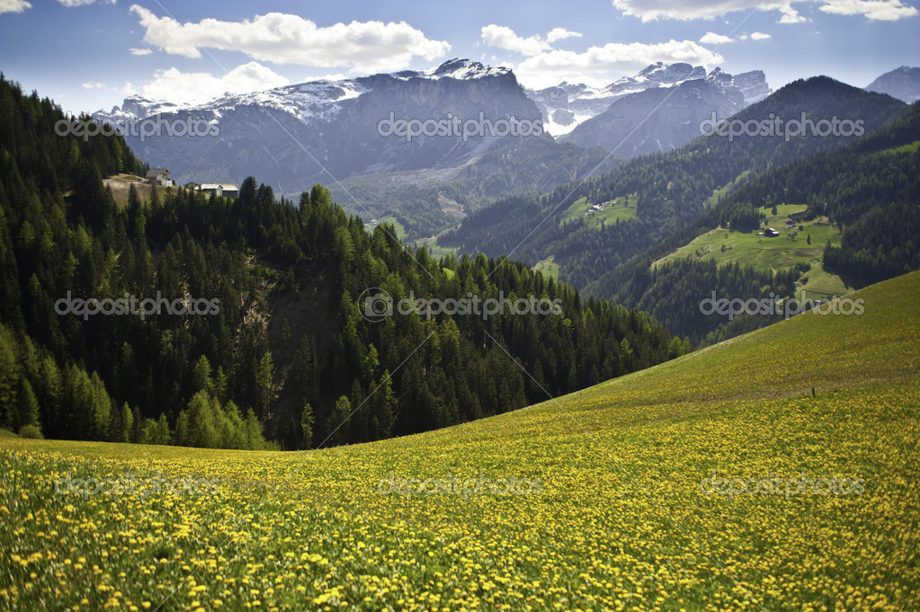Spring pastures in Dolomite Mountains of Alta Adige region in Italy — Stock Photo #10338830