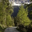 Road in the Italian Alps — Stock Photo