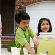 Lemonade Stand — Stock Photo
