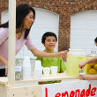 Lemonade Stand — Stock Photo #10002773