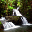 Hawaii Waterfall — Stock Photo