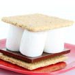 Smores on White Background - Stock Photo