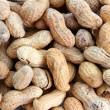 Bunch of peanuts - Stockfoto