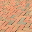 Brick Path - Stock Photo