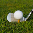 Golf — Stock Photo #10004151
