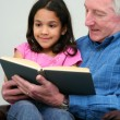 Grandfather Reading Book — Stock Photo