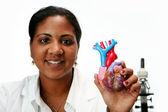 Cardiólogo — Foto de Stock