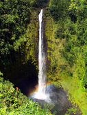 Akaka Falls Waterfall — Stock Photo