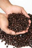 Grãos de café, realizados na mão — Foto Stock