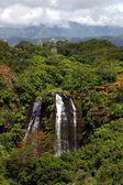Havajské vodopád v horách — Stock fotografie
