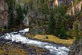 Yellowstone Whitewater — Stock Photo