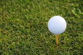 Golf Tee — Stock Photo