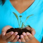 Teenage Girl Holding Plant — Stock Photo #10124184