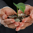 Man Holding Plant In Money - Stock Photo