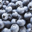 Full frame view of blueberries — Stock Photo