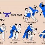 Постер, плакат: Judo and Jiu jitsu techniques
