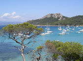 Panoramic view of Porquerolles island — Stock Photo