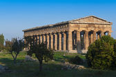 долина храмов пестум — Стоковое фото