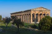 Dalen av templen i paestum — Stockfoto