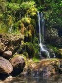 Petite Waterfall — Stock Photo