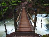 Bridge Over Troubled Waters — Stock Photo
