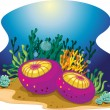 Aquatic Plants — Stock Vector