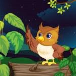Night owl — Stock Vector #10116150