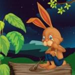 Crying rabbit — Stock Vector