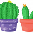 Two cacti - Stock Vector