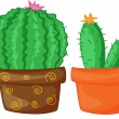 Cacti — Stock Vector