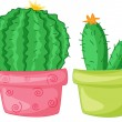 Stock Vector: Two Cacti