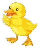 Cute cartoon duck — Stock Vector