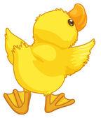Pato bonito dos desenhos animados — Vetorial Stock