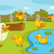 Stock Vector: Ducks at pond