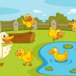 Ducks at the pond - Stock Vector