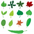 Leaves — Stock Vector #10277812