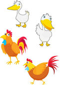 Fowls — Stock Vector