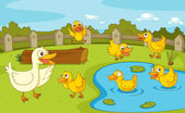 Ducks at the pond — Stock Vector