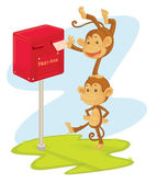 Monkeys posting a letter — Stock Vector