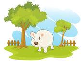 Animal in paddock — Stock Vector