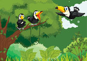 Toucans in the jungle — Stock Vector