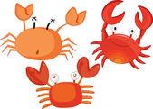 Crabs — Stock Vector