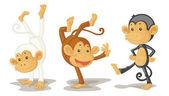 Opice — Stock vektor