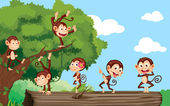Monkeys in a park — Stock Vector
